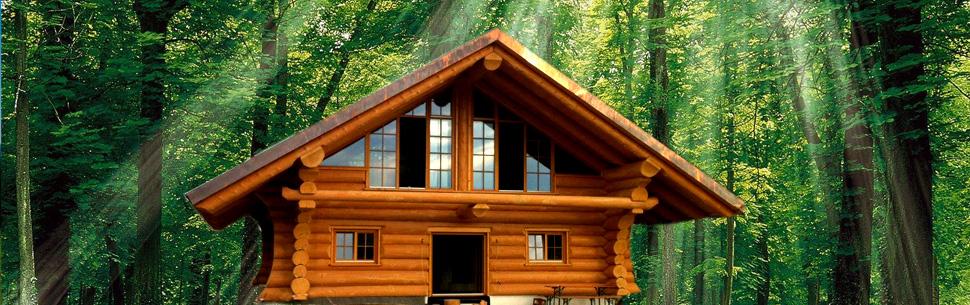 Voda construct for Case de lemn rotund